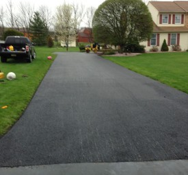Driveway paved with large trees at the end