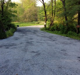 Winding driveway through the woods up to private property