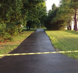 Freshly sealed driveway with trees on wither side