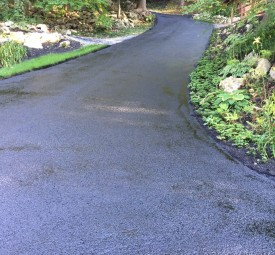 Just paved winding driveway through woods